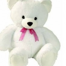 TEDDY BEAR WHITH  DOLL
